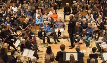 What is the musicians' take on this special concert format?