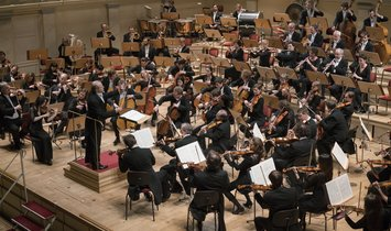 Experience the Konzerthausorchester Berlin